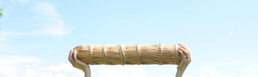 Bailiang log
