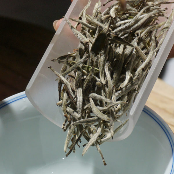 2019 Finest Grade Yinzhen White Tea